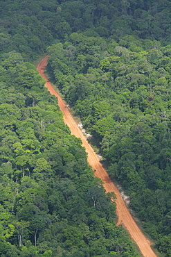 Aerial shot of a road going through the rainforest, Guyana, South America