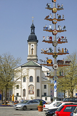 Maypole in front of St. Oswald's Church in Traunstein, Upper Bavaria, Bavaria, Germany, Europe