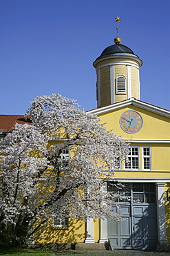 Marstall, stable, Schloss Wilhelmshoehe Palace, Kassel, Northern Hesse, Germany, Europe