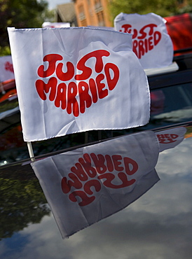 """Ensign with writing """"just married"""" reflecting in the car roof"""