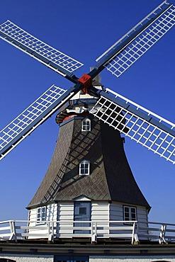 Old windmill build in dutch style - Friedrichskoog, Dithmarschen, Schleswig-Holstein, Germany, Europe