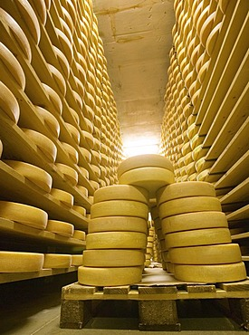 Gstaad, Che, 23.07.2006: Cheese maturing storage of the dairy Gstaad. A