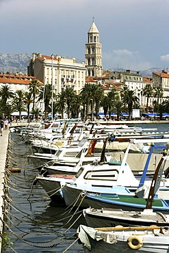 Old part of town, tower of the Sveti Duje cathedral, Split, Middle Dalmatia, Croatia