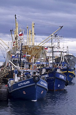 CHL, Chile, Patagonia, Punta Arenas: freight and fishing port.
