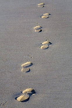 Impressions of shoes in the sand,