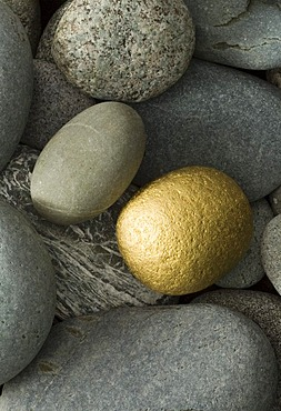 Golden stone and grey gravel