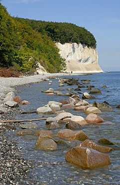 Chalk Cliffs of Ruegen, national park Jasmund, Ruegen, Rugia, Mecklenburg-Western Pomerania, Germany