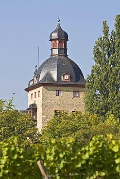 Vollrads Castle, Rheingau (Rhine District), Hesse, Germany