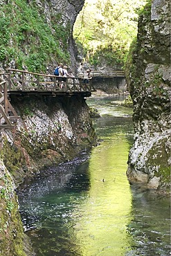 Vintgar Gorge with Radovna River near Bled -Triglav National Park - Slovenia