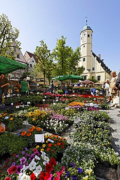 Weiden in der Oberpfalz , Unterer Markt , old townhall - Upper Palatinate Bavaria Germany