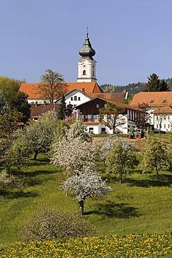 Lalling, Bavarian Forest, Lower Bavaria, Germany