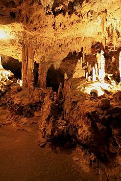 "The ""Wedding Room"" of Florida Caverns State Park, Marianna, Panhandle, Florida, USA"