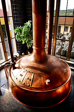 Copper kettle at a brewery, Schnaittach, Middle Franconia, Bavaria, Germany, Europe