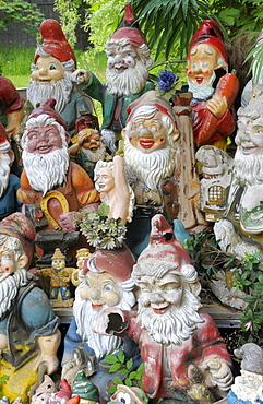 Ceramic figurines, garden gnomes