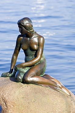 Little mermaid, landmark of Copenhagen, Denmark