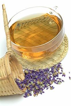 Herb tea made of lavender Lavendula officinalis, vulgaris, angustifolia