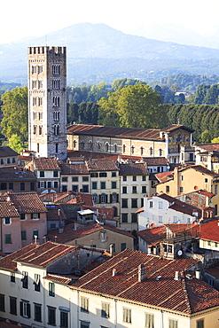 Campanile, San Frediano, Lucca, Tuscany, Italy