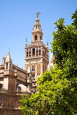 Cathedral, Seville, Andalusia, Spain, Europe