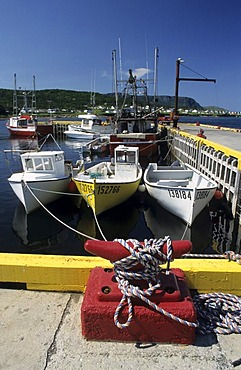 Fishing harbour of Rocky Point near Gros Morne National Park, Newfoundland