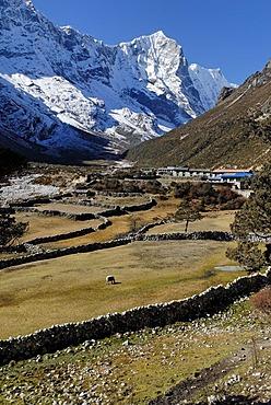 Thame Sherpa village, Thame Khola valley with Tengkang Poche (6500), Bhote Koshi Tal, Sagarmatha National Park, Khumbu, Nepal