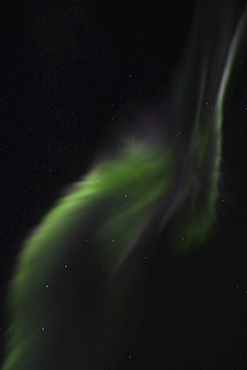 Northern Lights (Aurora Borealis), explosion of green light, Yukon Territory, Canada