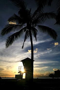 Beach, palm trees and lifeguard tower in Waikiki at sunset, O'ahu Island, Hawaii, USA
