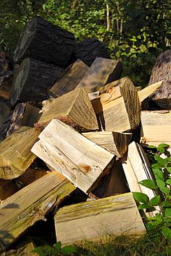Cut firewood