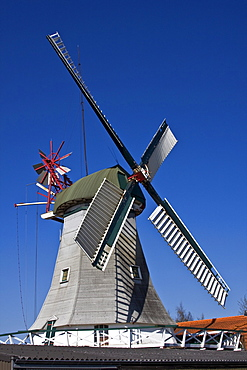 Historic Dutch windmill with wind rose, Wittmund, East Friesland, Lower Saxony, Germany, Europe