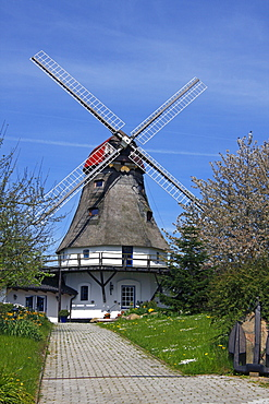 Historic windmill in Groedersby on the Schlei River, Schleswig-Holstein, Germany, Europe