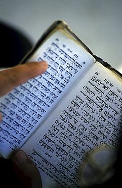 Torah, Wailing Wall, Jerusalem, Israel