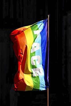 Peace rainbow flag