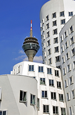 Buildings designed by Frank Gehry and the television tower, Duesseldorf, North Rhine-Westphalia, Germany, Europe