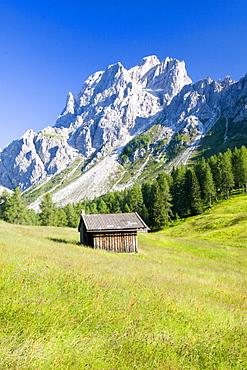 Rotwand meadows, Dolomites, Italian Alps, Italy, Europe