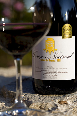 Red wine Touriga Nacional by the Oenologist Rui Reguinga, from the Quinta dos Roques winery in Cunha Baixa, Centro, Duo, Portugal, Europe