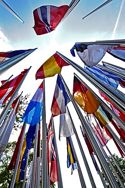 Various international flags on poles in the wind, Munich, Bavaria, Germany, Europe