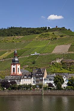 "Townscape of Zell and the vineyard ""Zeller Schwarze Katz"", Moselle, Rhineland-Palatinate, Germany, Europe, PublicGround"