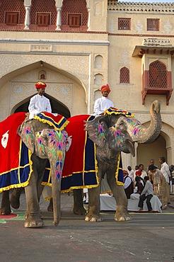 Elephants at the Gangaur Festival, Jaipur, Rajasthan, India
