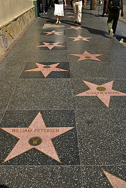 Terrazzo star for artists, Walk of Fame, Hollywood Boulevard, Hollywood, Los Angeles, California, United States of America, USA, PublicGround