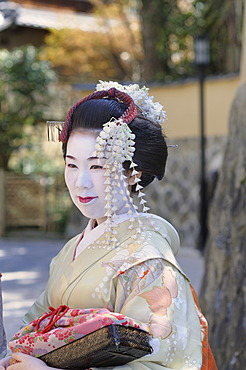 Maiko, geisha in training, in the Gion district, Kyoto, Japan, Asia