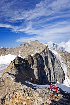 Hikers climbing Mt Angelo Grande in the Ortler mountain range, Mt Ortler and Mt Vertainspitz or Cima Vertana, South Tyrol, Italy, Europe