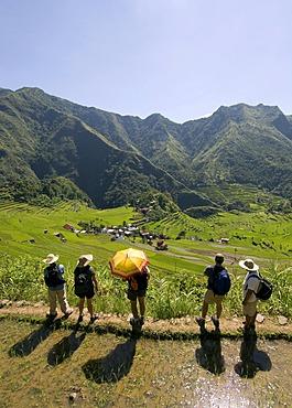 Trekking, rice field, Batad, Banaue, Luzon, Philippines, Asia