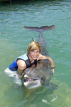 Tourist playing with a common bottlenose dolphin (Tursiops truncatus), dolphin show, Hawks Cay Resort, Florida Keys, USA