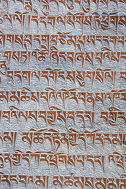 Tibetan Buddhist mantras carved in stone, Tongde Monastery, Zanskar Valley, Zanskar, Ladakh, Jammu and Kashmir, Indian Himalayas, North India, India, Asia