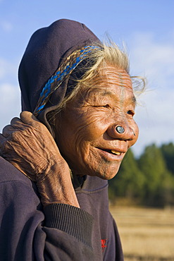 Elderly woman of the Apatani ethnic group, known for the pieces of wood in their nose to make them less attractive to rival tribes, Ziro, Arunachal Pradesh, North East India, India, Asia