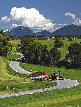 Road, agriculture, landscape, summer, Riegsee lake, Murnau, Upper Bavaria, Bavaria, Germany, Europe