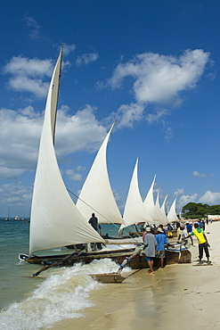 Preparations for a regatta with Ngalawa, traditional double-outrigger canoes, on the beach of Stone Town, Zanzibar, Tanzania, Africa