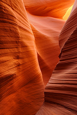 Red sandstone of the Moenkopi Formation, rock formations, colours and structures at Lower Antelope Slot Canyon, Corkscrew Canyon, Page, Navajo Nation Reservation, Arizona, USA