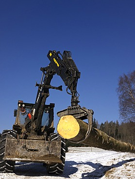 Logging, felled wood being processed into lumber, Freiamt, Black Forest, Baden-Wuerttemberg, Germany, Europe, PublicGround