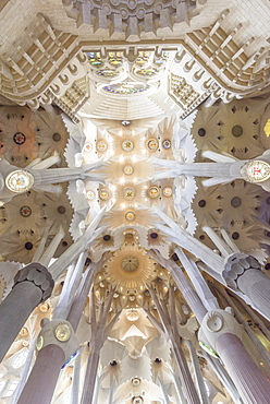 Interior view of the Sagrada Familia by Antoni Gaudi, Barcelona, Catalonia, Spain, Europe