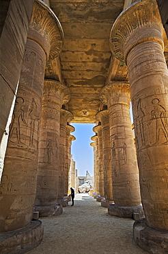 Arcade, Ramesseum Temple, Luxor, Egypt, Africa